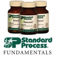 Why Standard Process Labs Supplements?